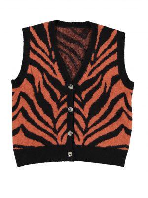 Spencer Zebra